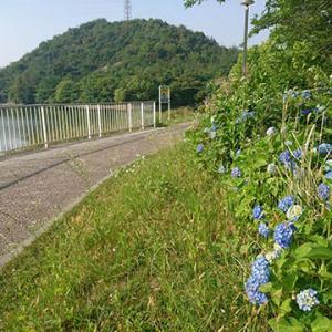 朝ラン20km@平荘湖