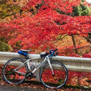 再度山・六甲 山岳コース