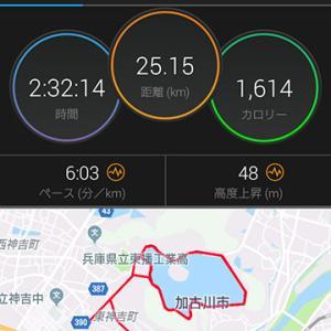25km走@平荘湖