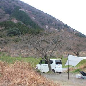 桜の蕾の下でデイキャンプ♪