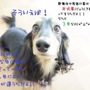ピッタリなかきぞめをヽ(@´з`@)ノ