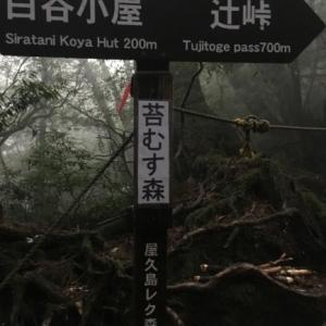 屋久島 2日目