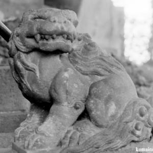 狛犬たちのモノローグ  File833  十条富士神社
