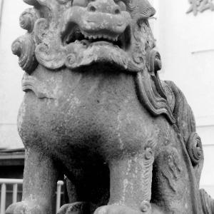 狛犬たちのモノローグ  File839  松本天祖神社