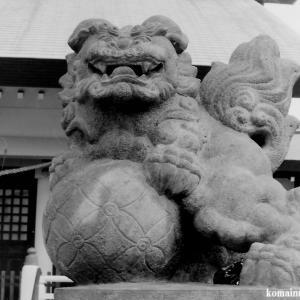 狛犬たちのモノローグ  File840  下小松天祖神社  其の壱