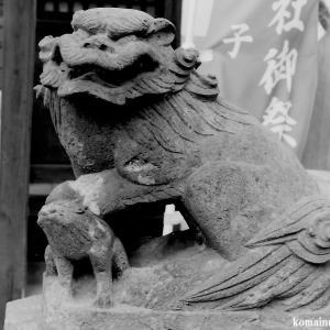 狛犬たちのモノローグ  File846  王子白髭神社