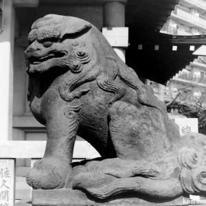 狛犬たちのモノローグ  File848  四ツ木白髭神社
