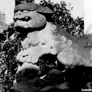 狛犬たちのモノローグ  File851  上一色天祖神社