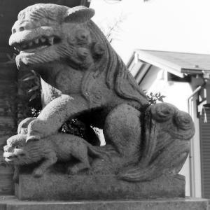 狛犬たちのモノローグ  File852  胡録天神社