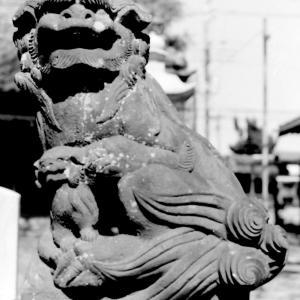 狛犬たちのモノローグ  File857  高須香取神社