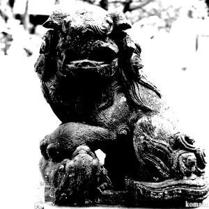 狛犬たちのモノローグ  File872  白幡神社  其の壱