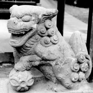 狛犬たちのモノローグ  File890  浅間神社