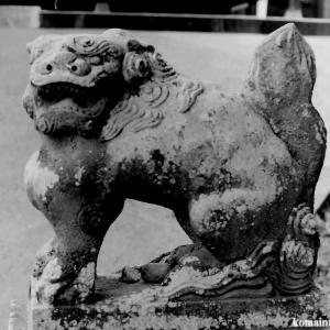 狛犬たちのモノローグ  File891  鷲神社