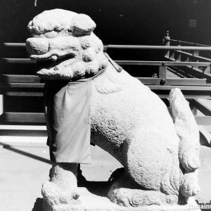 狛犬たちのモノローグ  File904  梶無神社