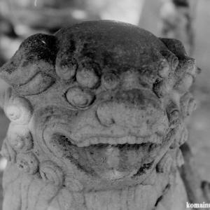狛犬たちのモノローグ  File905  大津神社