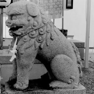 狛犬たちのモノローグ  File906  志紀長吉神社