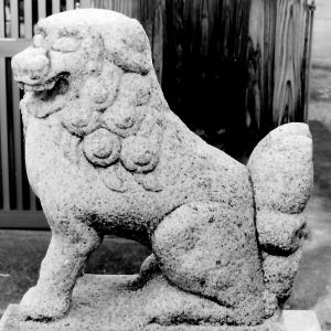 狛犬たちのモノローグ  File907  小松神社