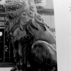 狛犬たちのモノローグ  File910  保利神社