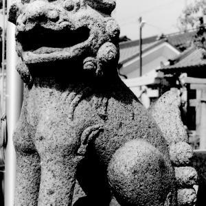 狛犬たちのモノローグ  File915  高崎神社  其の壱