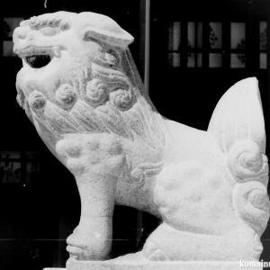 狛犬たちのモノローグ  File917  加賀屋天満宮  其の壱