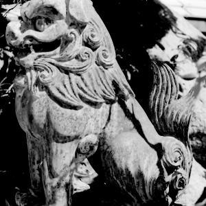 狛犬たちのモノローグ  File918  加賀屋天満宮  其の弐