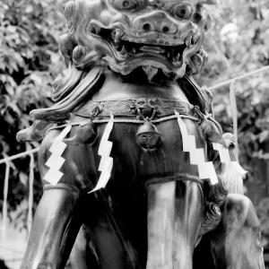 狛犬たちのモノローグ  File920  阿倍王子神社