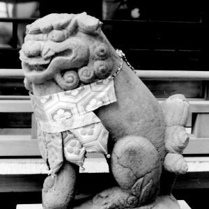 狛犬たちのモノローグ  File921  安倍晴明神社