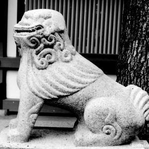狛犬たちのモノローグ  File924  杭全神社 其の参