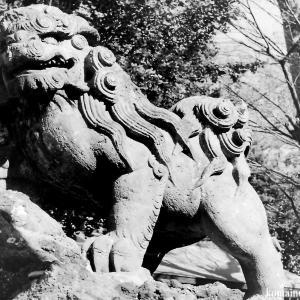 狛犬たちのモノローグ  File942  諏訪神社