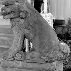 狛犬たちのモノローグ  File948  稲荷神社