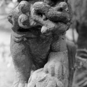 狛犬たちのモノローグ  File958  虎拍神社