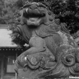 狛犬たちのモノローグ  File974  大沢八幡神社