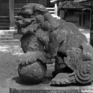 狛犬たちのモノローグ  File1003  根渡神社