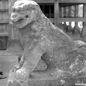 狛犬たちのモノローグ  File1008    雷電神社