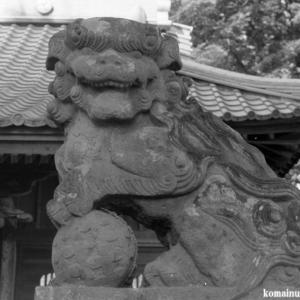 狛犬たちのモノローグ  File1010  八幡神社  其の弐