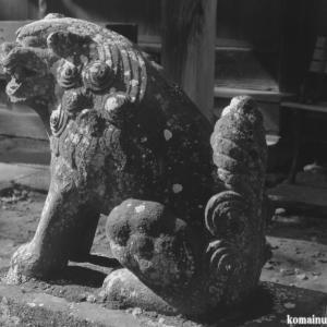 狛犬たちのモノローグ  File1011  星宮神社