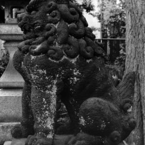 狛犬たちのモノローグ  File1014  満足稲荷神社