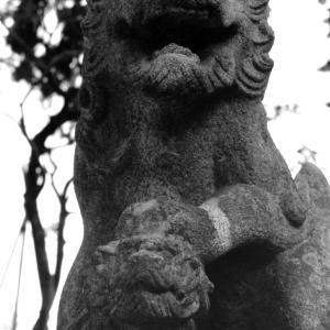 狛犬たちのモノローグ  File1016  小谷田氷川神社