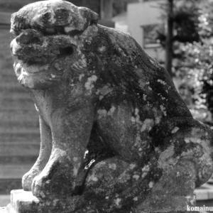 狛犬たちのモノローグ  File1019  赤城神社