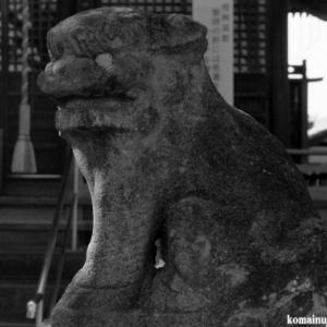 狛犬たちのモノローグ  File1021  八坂神社
