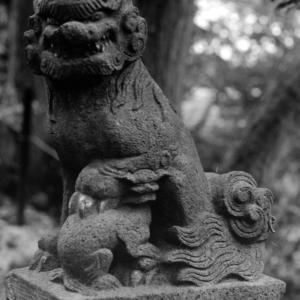狛犬たちのモノローグ  File1024  七ツ木神社