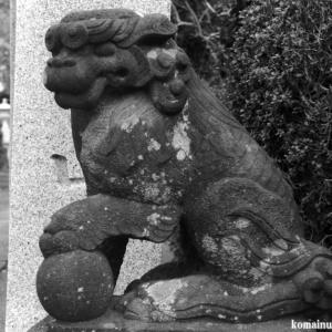 狛犬たちのモノローグ  File1024  下土棚白山神社