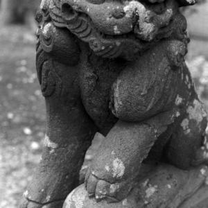 狛犬たちのモノローグ  File1026  下土棚白山神社  其の弐