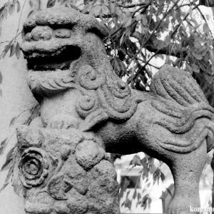 狛犬たちのモノローグ  File818  上千葉香取神社