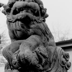 狛犬たちのモノローグ  File825  袋諏訪神社