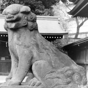 狛犬たちのモノローグ  File826  赤羽八幡神社