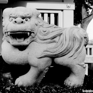 狛犬たちのモノローグ  File827  志茂熊野神社