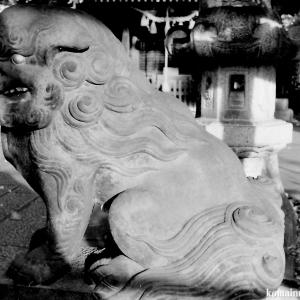 狛犬たちのモノローグ  File832  香取神社  其の弐