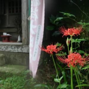 津久井城山ハイキング記 その4