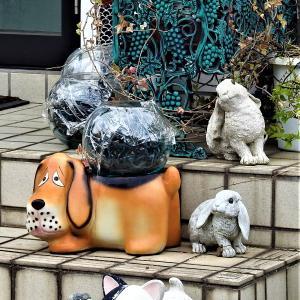 犬ウサギの置物 感動感激感謝写真